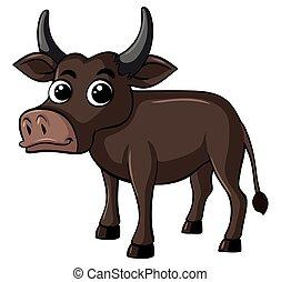 Buffalo with happy face