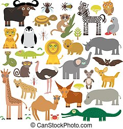 buffle, penguin., tortue, girafe, rhinocéros, fennec, ...