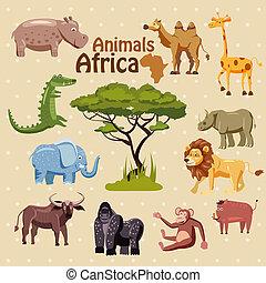 buffle, singe, animaux, hippopotame, gorille, lion, chameau, illustration, verrat, éléphant, rhinocéros, crocodile, girafe, style, dessin animé, afrique