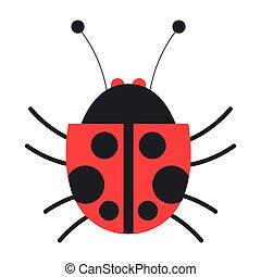 bug damy, ikona