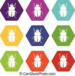 Bug icon set color hexahedron
