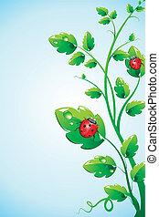 Bug on plant