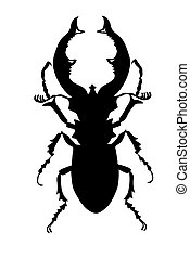 bug silhouette on white background