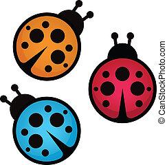 bug., vettore, signora, illustration.