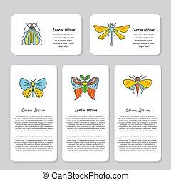 Bugs and insects identity design cards vector - Vector Logo...