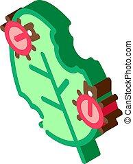 Bugs Eat Leaf isometric icon vector illustration