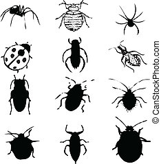 bugs vector illustration isolated on white silhouette