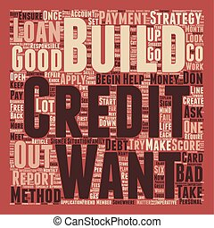 Build a Credit Strategy text background wordcloud concept
