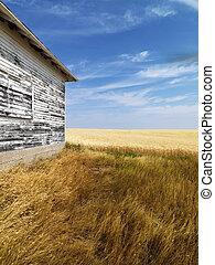 Building and grassland.
