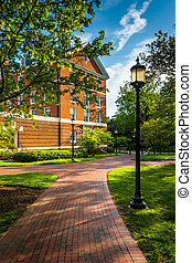 Building and streetlight along a brick walkway at John Hopkins U