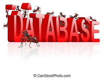 building database - database building ants creating big word