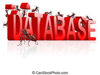 building database - database building ants creating big word