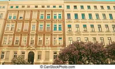 Building facade and blooming lilac in Leipzig, Germany -...
