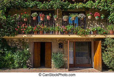 Building facade with lot of flower pots