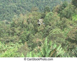 Building in Cloudforest of Peru