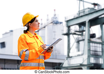 Building Inspection. Heat And Power Industry