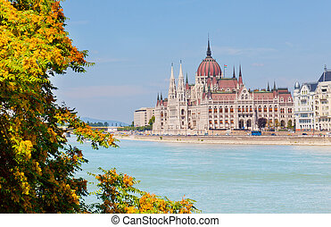 building of parliament of Hungary on the river bank Danube, in the foreground a tree branch with leaves