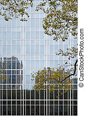 Buildings of Glass