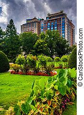 Buildings seen from the Public Garden in Boston, Massachusetts.