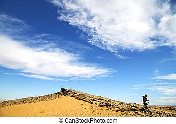 buisson, fossile, désert, vieux
