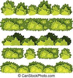 buissons, motifs, différent, cinq, vert