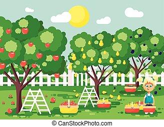 buiten, appel, rijp, scène, oogst, herfst, boompje, meisje, blonde, landscape, weinig; niet zo(veel), plat, volle, tuin, stijl, illustratie, fruit, karakters, kind, zetten, oogsten, spotprent, pruim, boomgaard, peer, vector, mand