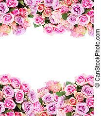 bukiet, od, świeży, róże