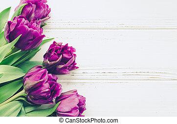 bukiet, purpurowy, tulipany