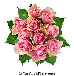 bukiet, róża, białe kwiecie, odizolowany