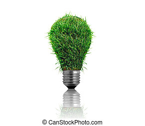 3d Illustration of a grass bulb isolated on white