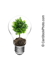 Bulb light with green tree inside isolated on white background, clipping part
