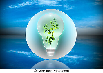 Bulb with a plant inside