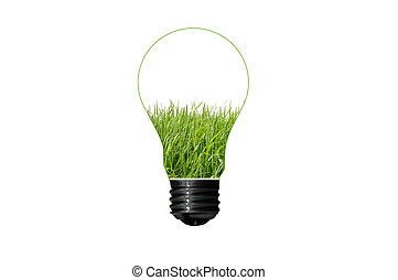 Bulb with grass inside isolated on white background , green eco concept