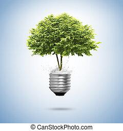 bulbo, árvore, isolado, luz