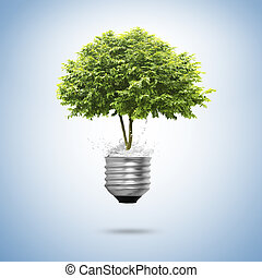 bulbo, albero, isolato, luce