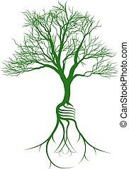 bulbo, albero, radici, luce
