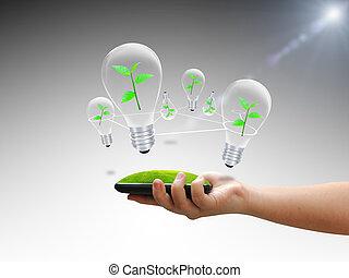 bulbo, albero verde, tenendo mano
