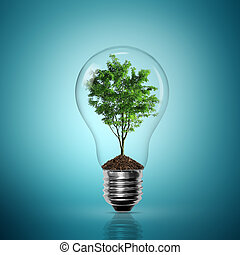 bulbo, dentro, árvore, luz