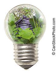 bulbo, ecológico, conceito, -