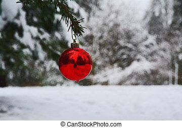 bulbo, só, Natal, vermelho
