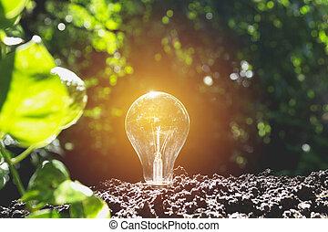 bulbos, conceito, bulbs., luz, criatividade, idéia, one., glowing