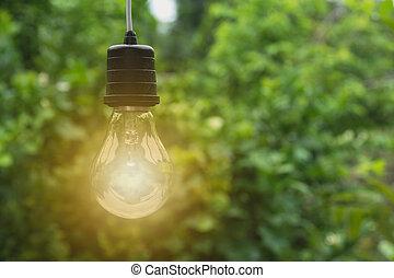 bulbos, conceito, bulbs., luz, criatividade, idéia, one., glowing, penduradas
