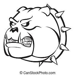 buldog, gniewny