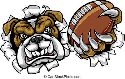 buldogue, esportes, futebol americano, mascote