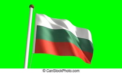 Bulgaria flag (Loop & green screen) - 3D Bulgaria flag video...