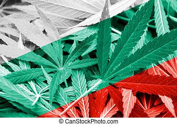 Bulgaria Flag on cannabis background. Drug policy. ...