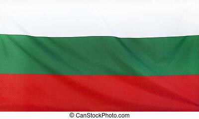 Bulgaria Flag real fabric seamless close up