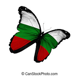 Bulgarian flag butterfly flying, isolated on white background