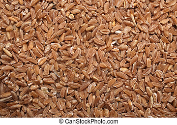 Bulgur, for backgrounds or textures