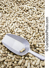 Bulk Peanuts - Peanuts Store bulk nuts, food and sale